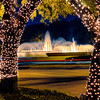 The Mecom Fountain at Christmas<br /> The Mecom Fountain is a Houston landmark. For travelers between the Medical Center and downtown, this is a common sight. Though the fountain lights do not change color, the area Christmas lights still help make the atmosphere bright and festive. This scene is peeking through the trees of the Hotel ZaZa. The area is heavily traveled and the colored lines are the cars going by. It took a bit of timing not to get only the bright headlights of the cars passing. The reds and yellows of the taillights work much nicer for that touch of color.
