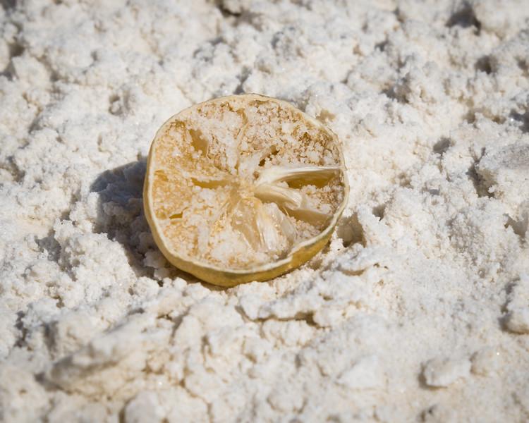 Desert Lemon