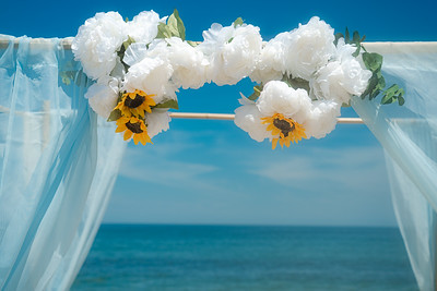 VBWC RHOL 07262020 Sandbridge Wedding #7 (c) 2020 Robert Hamm