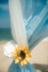 VBWC RHOL 07262020 Sandbridge Wedding #6 (c) 2020 Robert Hamm