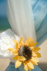 VBWC RHOL 07262020 Sandbridge Wedding #5 (c) 2020 Robert Hamm