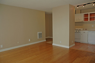 Beautiful bamboo flooring throughout...