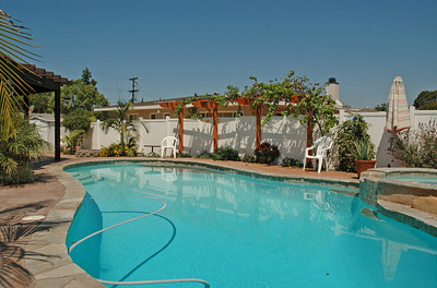 The pool with the pergola in the background. Note the automatic pool cleaner.