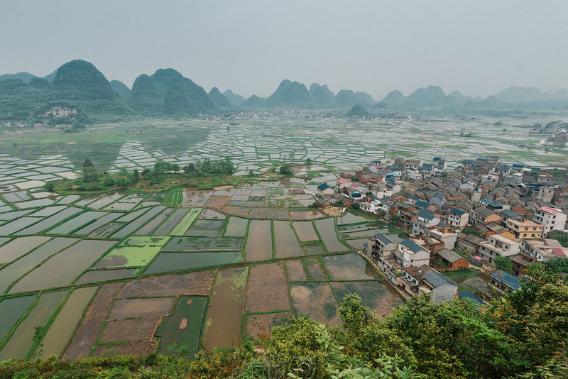 View over rice fields in the Chinese countryside | Asia