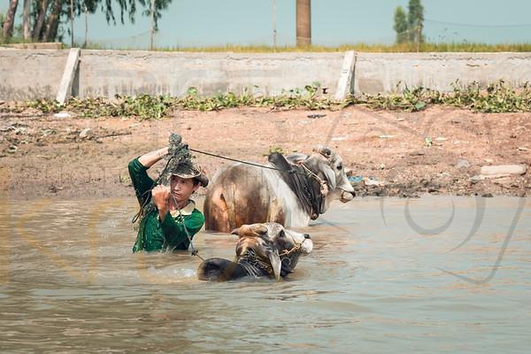 Mekong River Vietnam | Asia
