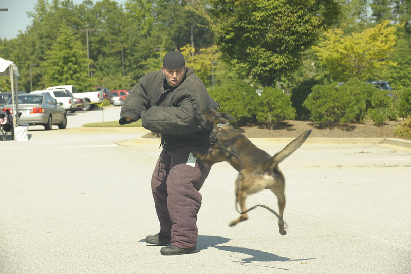K-9 officer Jones in bite suit with Rex and K-9 Handler Officer Hart