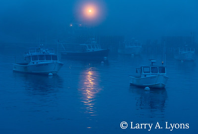 Foggy Night Over Fishing Boat Harbor