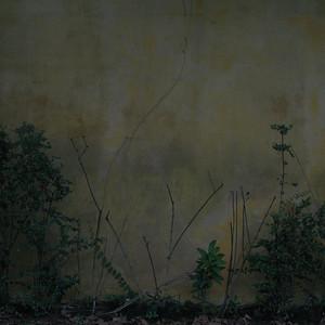 """Acasos"", abstrata, São Paulo, 2012, Brasil."