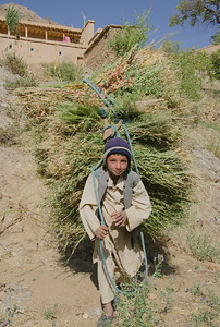 A young boy carries pasture in a remote community
