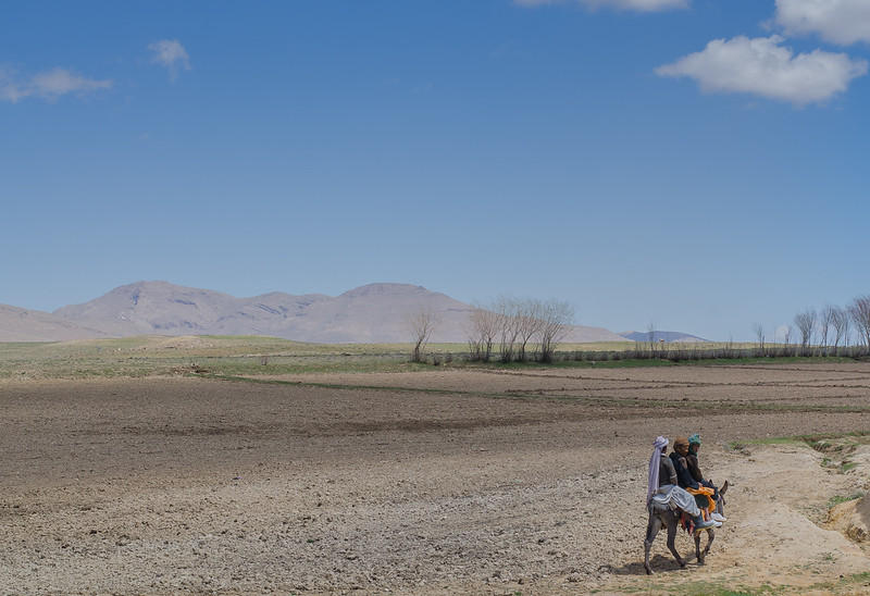 Kids riding a donkey in the high plains of central Afghanistan, Ghor