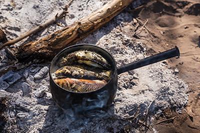 Okavango Delta, Botswana Fresh fish for dinner!