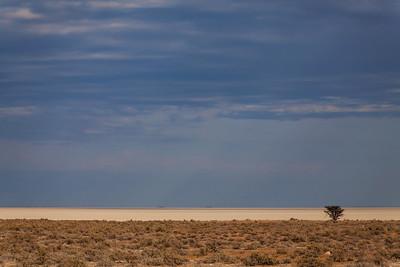 Etosha National Park, Namibia Etosha Salt Pan in Etosha National Park.