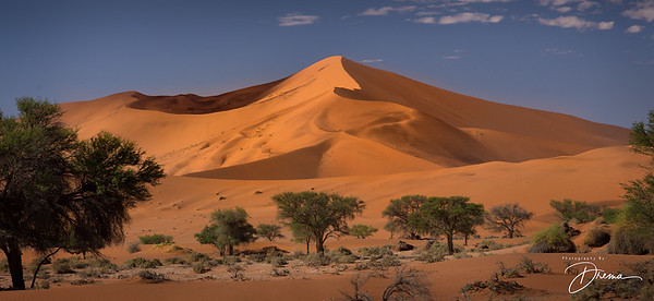 Namib Desert, Namibia: Big Daddy is the tallest sand dune in the world. From the top of this dune you can look down into the Deadvlei pan.