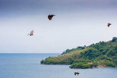Beautiful Lake Kivu, visited from the small town of Kibuye, Rwanda.