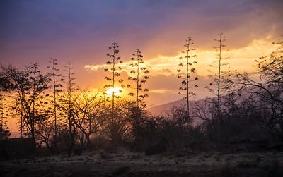 Northern Tanzania Sunset west of Arusha.
