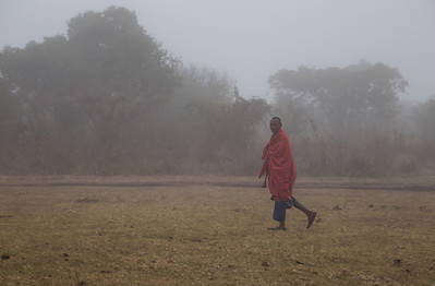Ngorongoro Crater, Tanzania A Masai walks through the early morning fog at our campsite on the rim of Ngorongoro Crater.