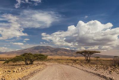 Serengeti National Park, Tanzania A long road leads to the exit of Serengeti National Park.