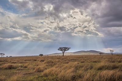 Serengeti National Park, Tanzania Morning on the Serengeti