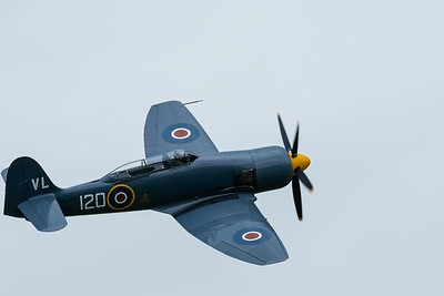 Hawker Sea Fury in flight