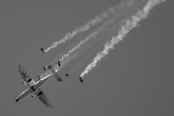 RAF Falcons in Black and White
