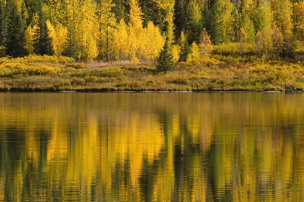 Autumn Reflection along Seward Highway