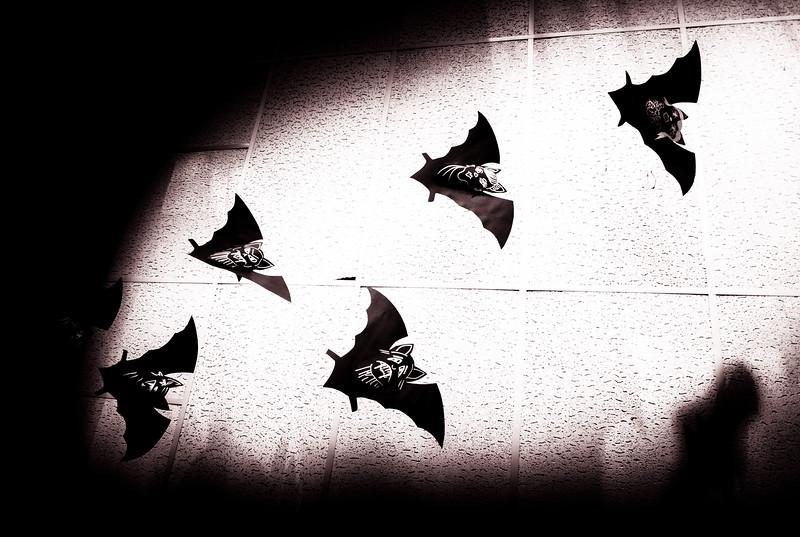 23. Release the Bats!