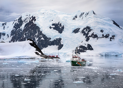 Antarctica, Paradise Bay: As we pulled in to Paradise Bay, the Greenpeace ship Arctic Sunrise was moored near the Argentine Almirante Brown Antarctic Base Station, whose red buildings are seen in the center of the image. The bay was dead calm and the beautiful reflections of the snow-capped mountains in the water lent a peaceful serenity to the scene.