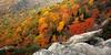 Autumn at Rough Ridge