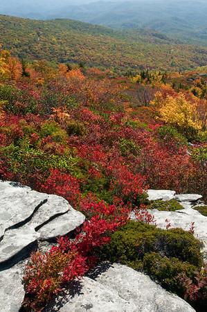 Rough Ridge in Autumn