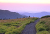 Appalachian Trail at Roan