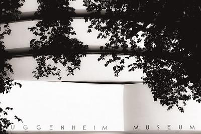 Gugggenheim Museum, NY