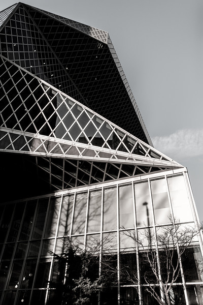 Seattle Central Library #2