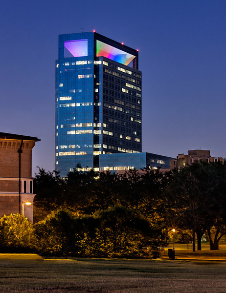 Texas Medical Center from  Hermann Park