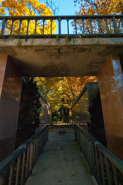 Mt Auburn Cemetery November 2018-169