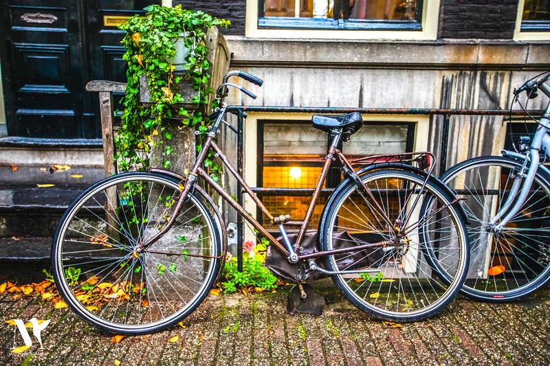 THAT OLS SCHOOL BICYCLE