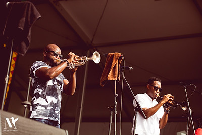 Trumpet Black (R.I.P)