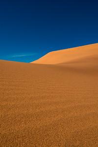 Forever Dune