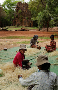 Kampong Thom Province, Cambodia Women stripping reeds for basket and wicker weaving . In the background is one of the Sambor Prei Kuk pre-Angkorian temples. These ruins in Kampong Thom Province are about 500 years older than the Angkor ruins.  They were the former Khmer city of Isanapura, the capital of the pre-Angkorian Khmer Kingdom known from ancient Chinese chronicles as Chenia.