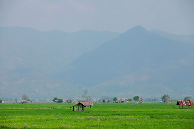 Chiang Rai Province, Thailand Rice Fields in Chiang Rai Province in Northern Thailand.
