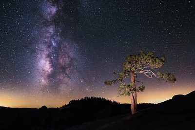 Lone Tree and Milky Way at Olmsted Point