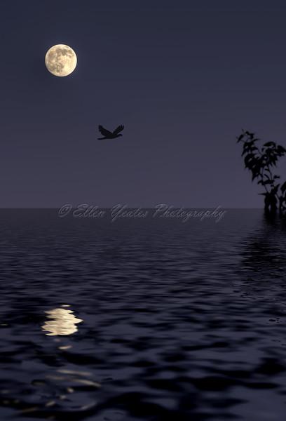 Moon Reflection HDR