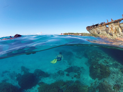 Snorkelling the Heron Island wreck