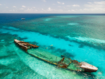 Snorkelling around the shipwreck of the HMAS Protector at Heron Island