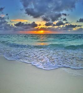 Heron Sunrise