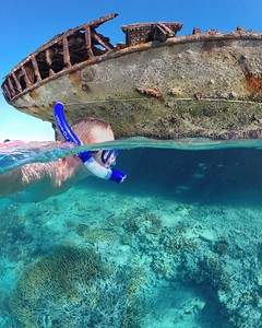 Snorkelling around the Heron Island shipwreck