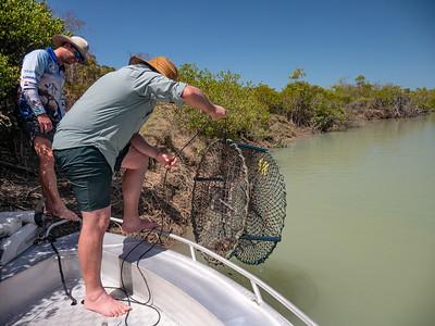 Crabbing at Clairview