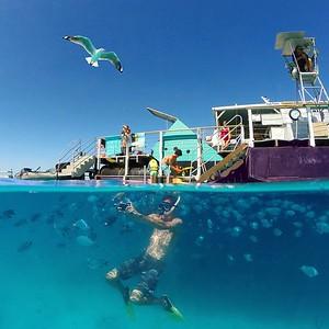 Great Barrier Reef Selfie!