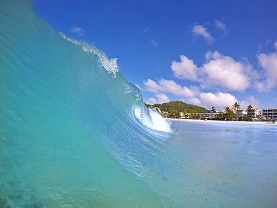 Noosa Waves