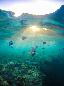 Sunrise under the water on the Great Barrier Reef