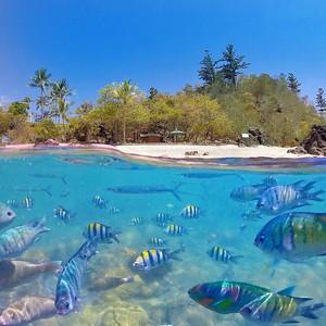 Daydream Island 4